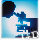 Los Incentivos Públicos para Actividades de I+D e Innovación Tecnológica (08/03/2006)